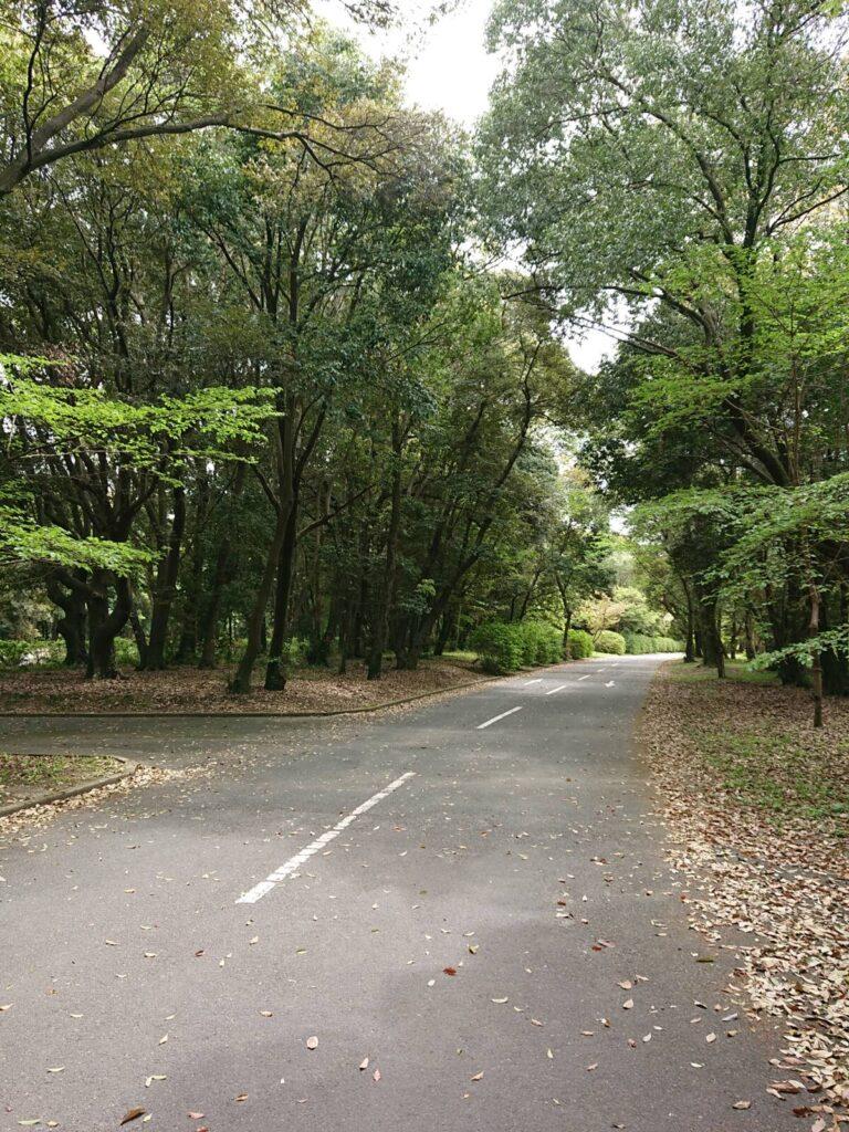 橿原神宮歩道